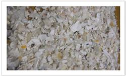PP Milk White Molding Scrap of 50MT for Sale