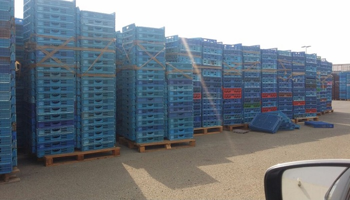 Huge Quantity of HDPE Crate Regrind for Sale