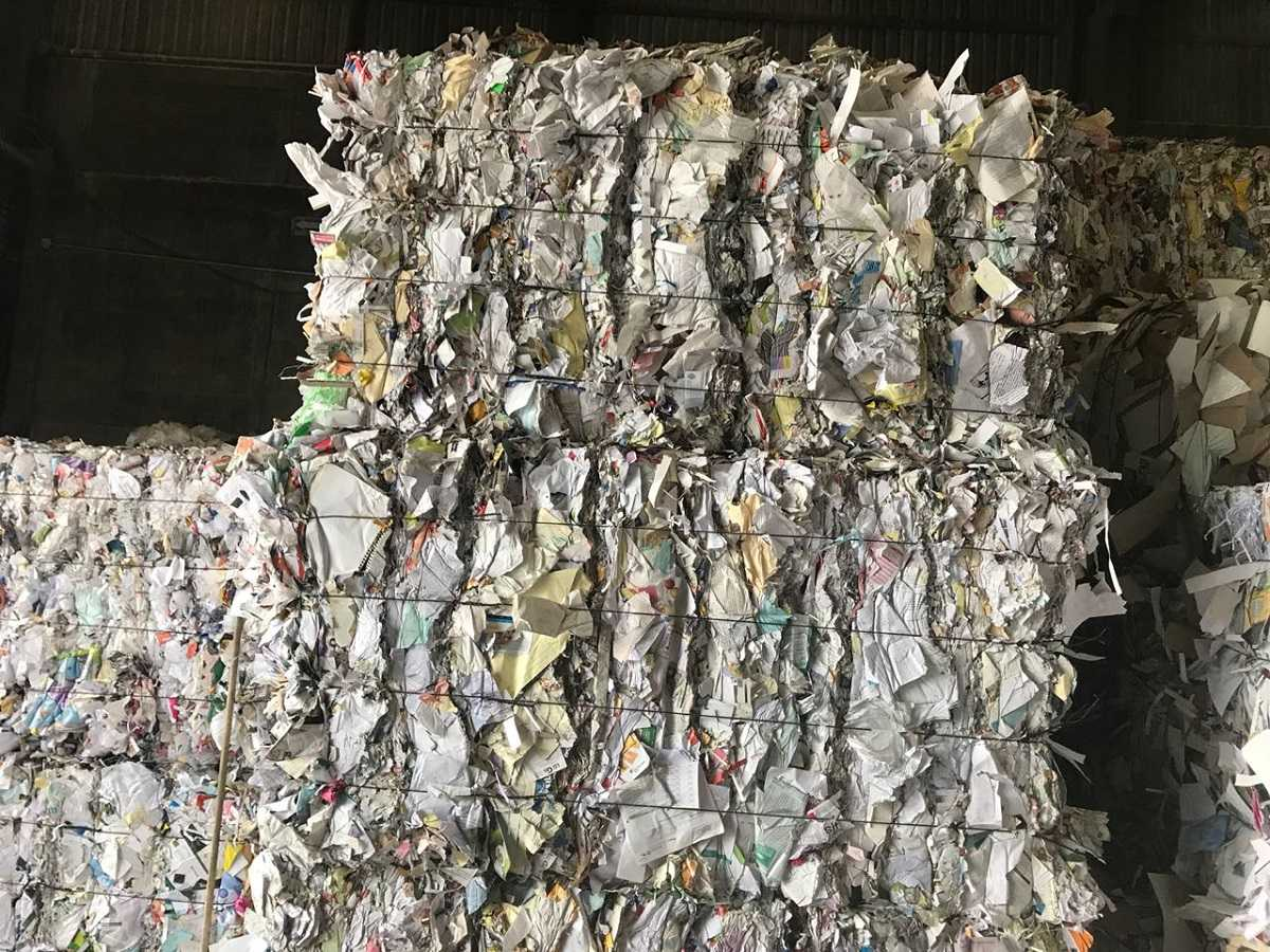 Colored Office Paper Scrap 500 Tons for Sale