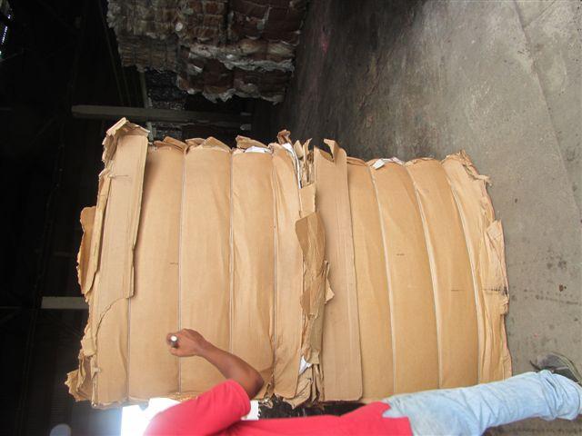 sell Cardboard scrap