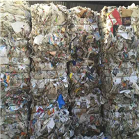 1000 Tons Baled Sorted Newspaper Scrap ONP 8/9 for Sale @ 230 US $