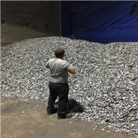 500 MT Shredded Aluminum 6063 Extrusion Scrap 99% Clean for Sale