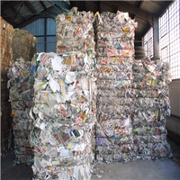 Baled Sorted Newspaper Scrap ONP 8/9 1000 Tons for Sale @ 205 USD