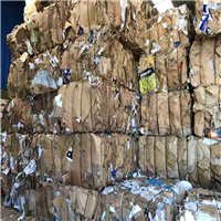 200 Tons Pressed Cardboard Scrap for Sale