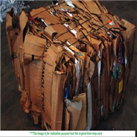 Offering 1000 Tons Cardboard OCC Scrap