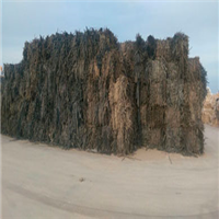 500 Ton LDPE Scrap Available for Sale