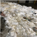 RR2665L 400,000 lbs Walmart LDPE Film Scrap in Bales for Sale
