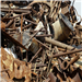 HMS 1&2 Scrap 80/20 Bulk Quantity for Sale @ 260 US $