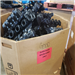 Exporting 80000 Lbs RR3950A Nylon 6/6 Scrap Part (33% Glass Filled)