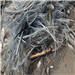 1000 Tons Iron Wire Cable Scrap for Sale