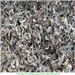 Selling 2000 MT Shredded Steel Scrap