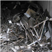 Stainless Steel Scrap of Different Grades for Sale