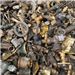 Monthly 22 Tons Brass Scrap Available for Sale