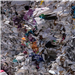 Mixed Colored Waste Paper Scrap 500 MT for Sale @ 170 US $