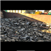 Zorba Aluminium Scrap 60 MT for Sale