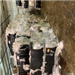 300,000 lbs Unsorted Walmart Film Scrap in Bales Mixed with HDPE Pill Bottles Scrap for Sale