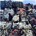 Looking to Export Scrap Car Bundles 200 Tons (AUSTRALIA TO PAKISTAN)